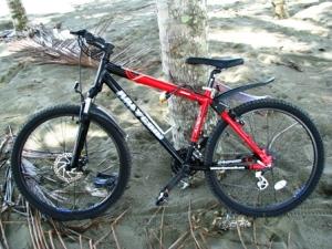 biking 026