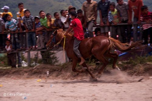 Pacu Kude di TanahGayo