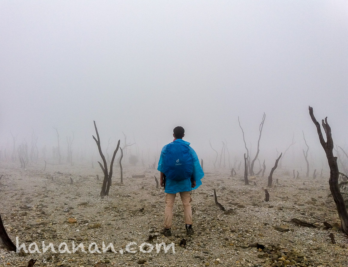Mendaki Gunung Papandayan & Mencari KeromantisanEdelweis