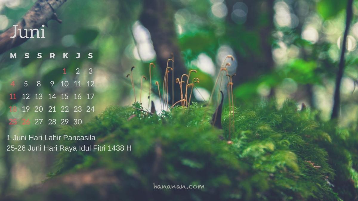 Kalender Juni Untuk Wallpaper DesktopKamu!