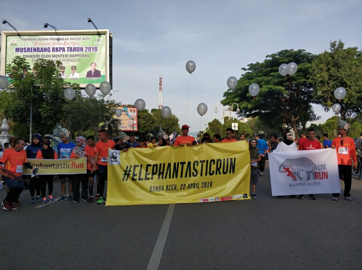 #Elephantastic Run 2018 di Banda Aceh