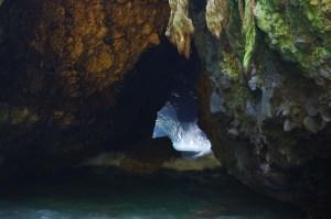 Gua Kelelawar. Kotoran kelelawar menjadi makanan ikan-ikan di bawahnya.